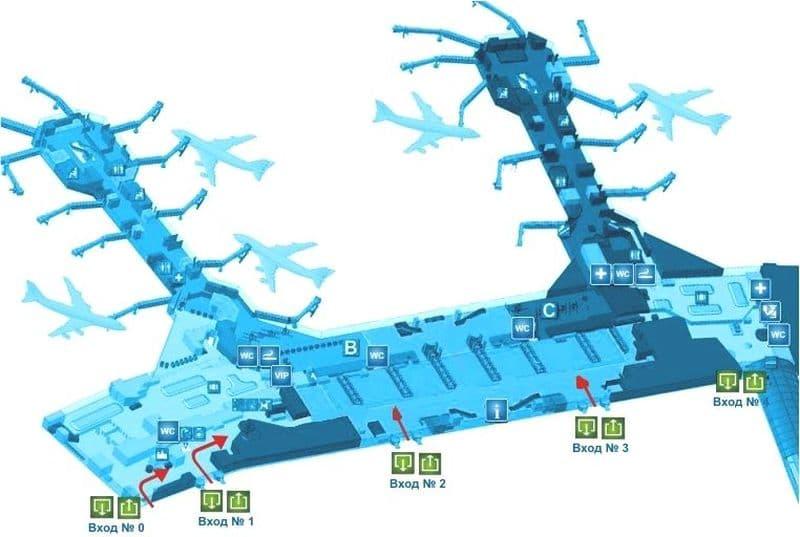 Сколько терминалов в Домодедово