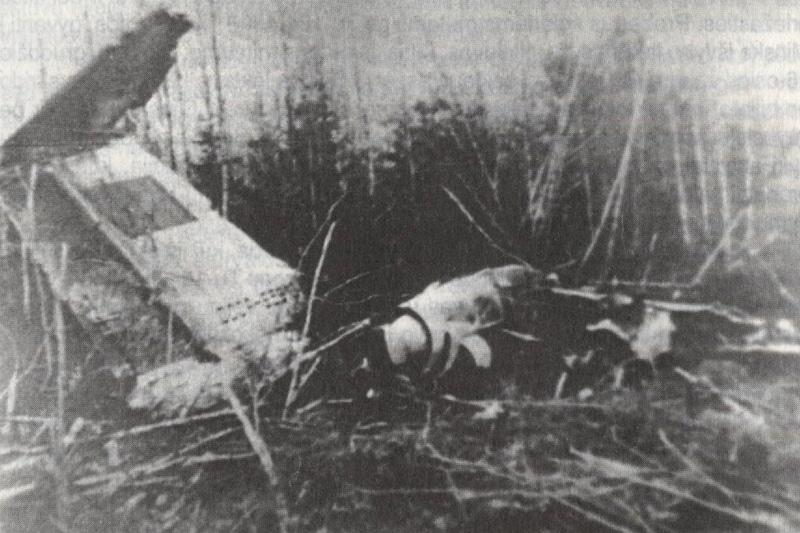 Катастрофа ТУ-134 под Минском