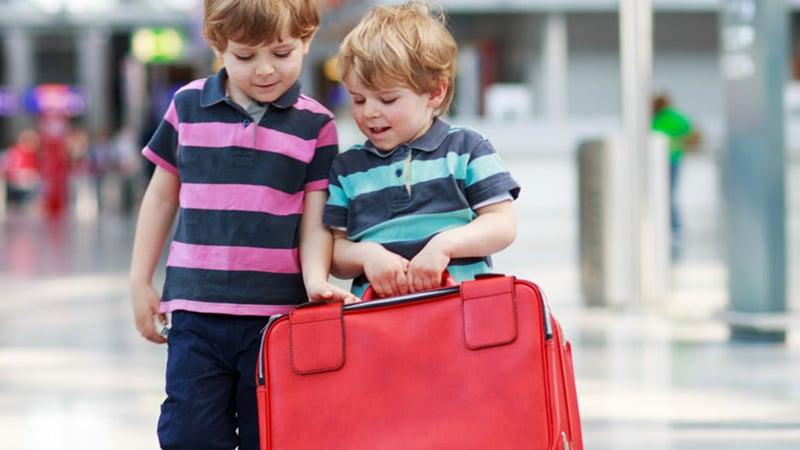 Что значит норма провоза багажа 1pc